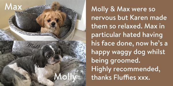 Max-Molly-review